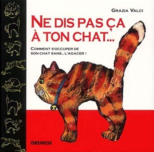 9788873014911: Ne dis pas ça à ton chat ...: Comment s'occuper de son chat sans l'agacer