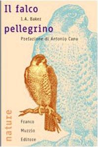 9788874131389: Il falco pellegrino
