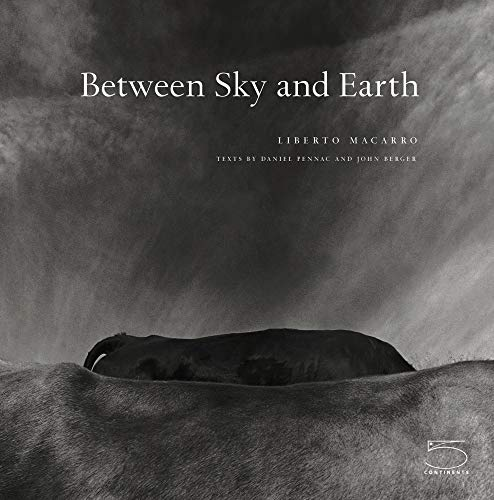 9788874392674: Between Sky and Earth (Imago Mundi)
