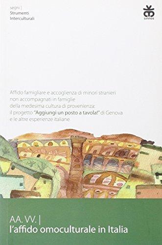 9788876091605: L'affido omoculturale in Italia