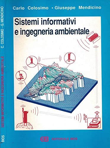 9788877400864: Sistemi informativi e ingegneria ambientale