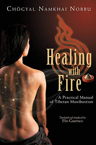 9788878341135: Healing with Fire