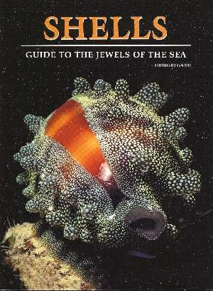 9788880954132: Shells: A Guide to the Jewels of the Sea