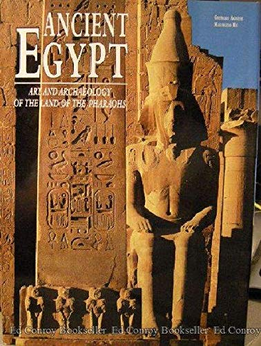9788880956440: Ancient Egypt: Art and Archaeology in the Land of the Pharaohs (Treasures of Ancient Egypt)