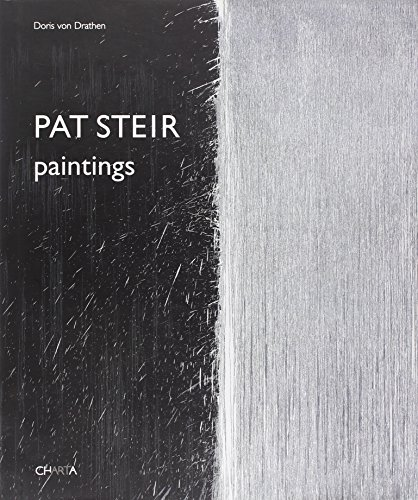 9788881586486: Pat Steir: Paintings