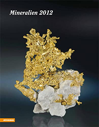 9788882667511: Mineralien 2012