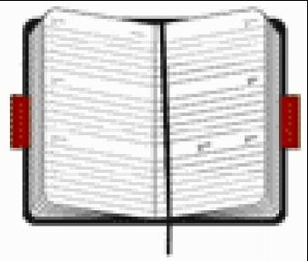 9788883705700: Pocket Diary Weekly 2006