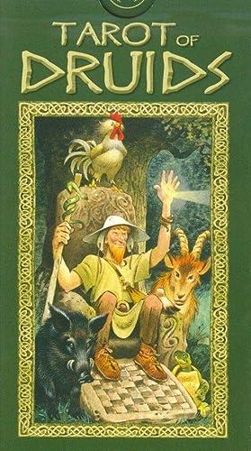 9788883953538: Tarot of the Druids