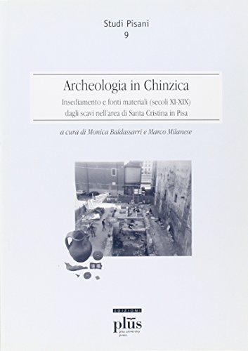 Archeologia in Chinzica. Insediamento e fonti materiali (secoli XI-XIX) dagli scavi nell'area ...