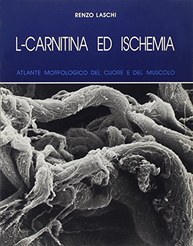 9788885037694: L-Carnitine and Ischaemia - A Morphological Atlas of the Heart and Muscle