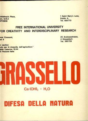 Grassello Ca (OH)2 + H2O. Difesa della: BEUYS, Joseph &