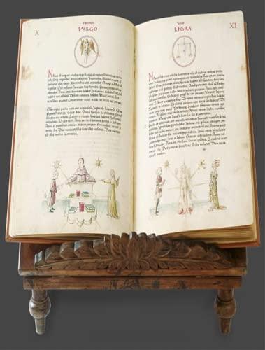 Liber physiognomiae. [Nur der Kommentarband / only