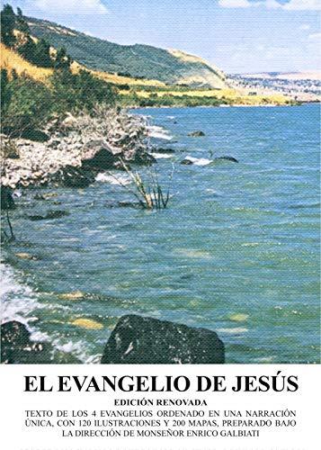 El evangelio de Jesús (8886833415) by [???]