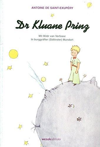 9788887719147: Dr. Kluane Prinz (Parole etniche)