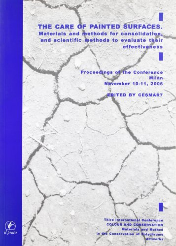 9788889566947: The care of painted surface. Materials and methods for consolidation, and scientific methods to evaluate their effectiveness