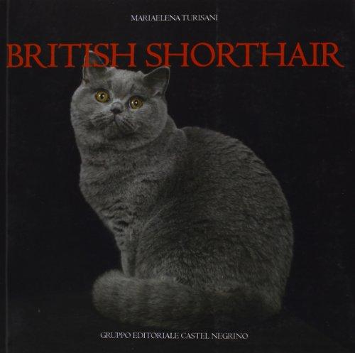 9788889662830: British shorthair