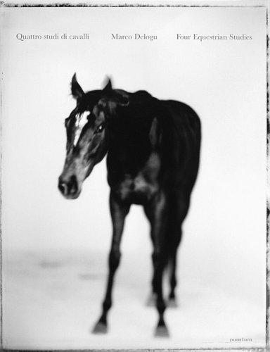 9788895410067: Il cavallo di bronzo nei musei capitolini: un originale greco a Roma-Quattro studi di cavalli. Ediz. italiana e inglese (Punctum)