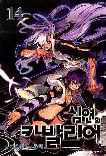 9788967258528: Cavalier of the Abyss. 14 (Korean edition)