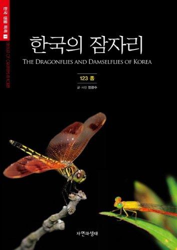 9788997429028: Korea's bed (Korean edition)