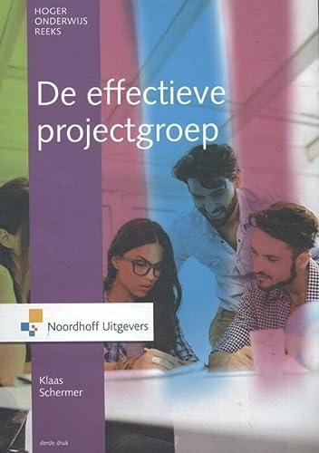 9789001866297: De effectieve projectgroep
