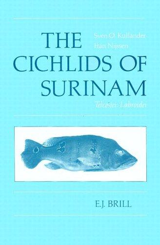 The Cichlids of Surinam: Teleostei : Labroidei (Paperback): S. O. Kullander, H. Nijssen