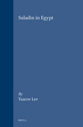 9789004112216: Saladin in Egypt (Medieval Mediterranean)