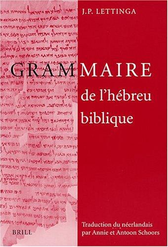 9789004114739: Grammaire de l'hébreu biblique