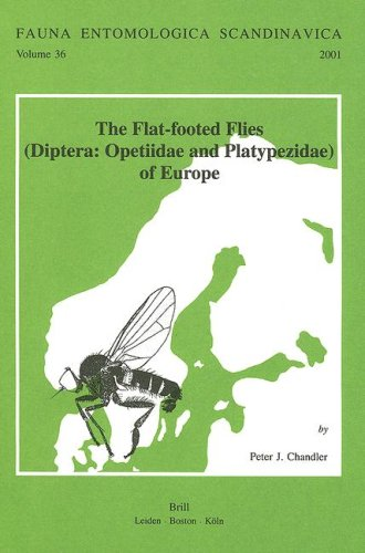 9789004120235: The Flat-Footed Flies (Diptera: Opetiidae and Platypezidae) of Europe (Fauna Entomologica Scandinavica,)