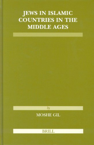 9789004138827: Jews in Islamic Countries in the Middle Ages (Etudes Sur Le Judaisme Medieval)