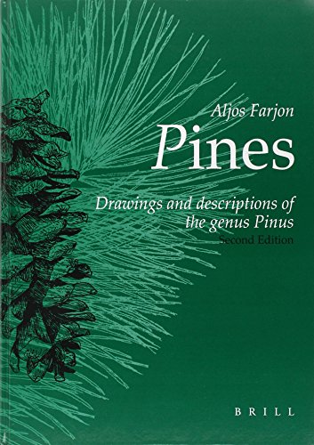 Pines: Drawings and Descriptions of the Genus Pinus (9004139168) by Aljos Farjon
