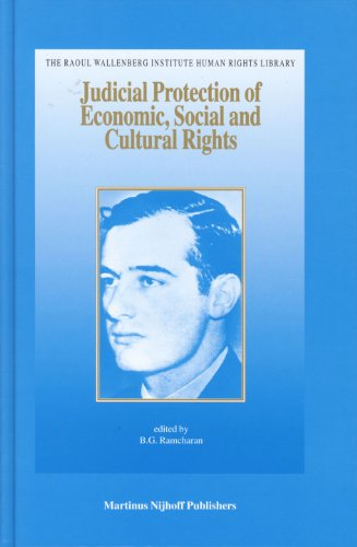 9789004145627: Judicial Protection of Economic, Social and Culture Rights: Case and Materials (Raoul Wallenberg Institute Human Rights Library)