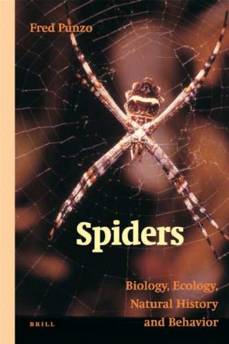 9789004156630: Spiders: Biology, Ecology, Natural History, and Behaviour