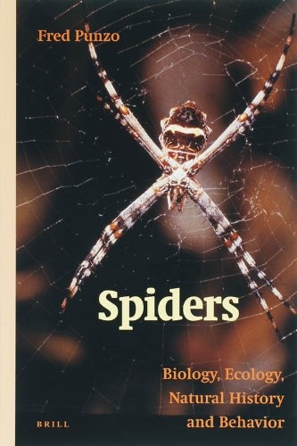 9789004156647: Spiders: Biology, Ecology, Natural History, and Behaviour