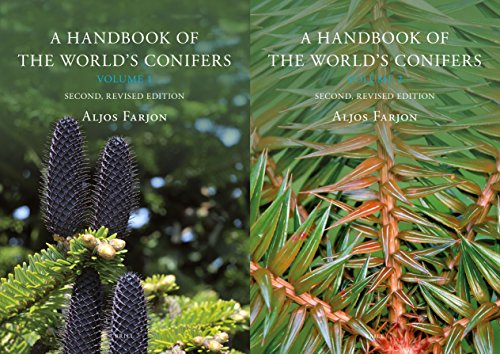 9789004177185: A Handbook of the World's Conifers