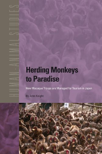 9789004187931: Herding Monkeys to Paradise: How Macaque Troops Are Managed for Tourism in Japan (Human-Animal Studies)
