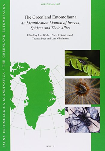9789004256408: The Greenland Entomofauna: An Identification Manual of Insects, Spiders and Their Allies (Fauna Entomologica Scandinavica)