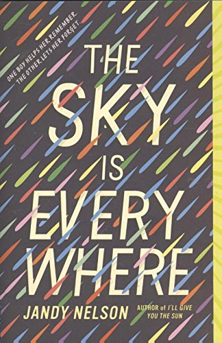 9789020637052: The Sky is everywhere