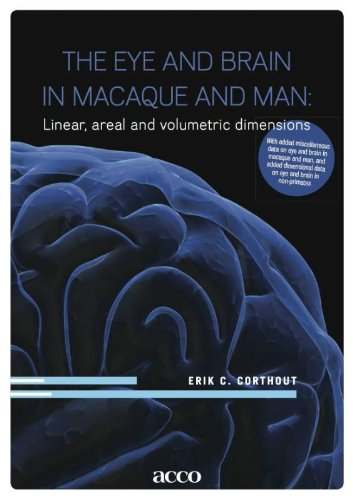 The Eye and Brain in Macaque and Man: Linear, Areal and Volumetric Dimensions: Erik C. Corthout