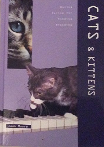 Cats & Kittens: n/a