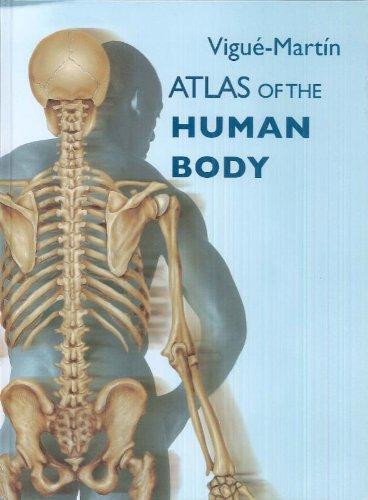 Atlas of the Human Body: Jordi Vigu?