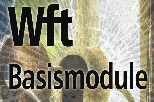 9789037201529: Basismodule WFT Docentenhandleiding