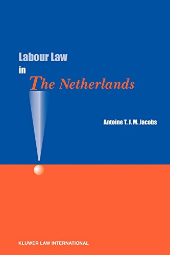 9789041122483: Labour Law in the Netherlands