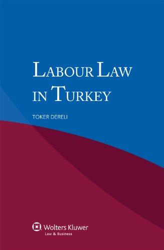 9789041140388: Labour Law in Turkey