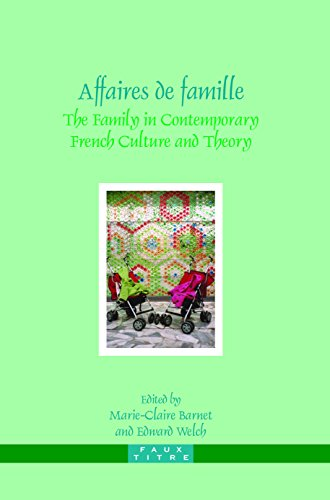 9789042021709: Affaires De Famille: The Family in Contemporary French Culture and Theory (Faux Titre)