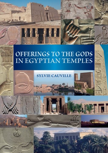 9789042926189: Offerings to the Gods in Egyptian Temples
