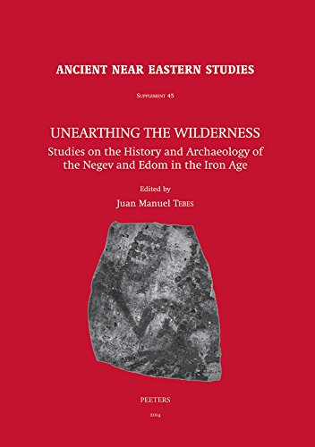 9789042929739: Unearthing the Wilderness: Studies on the History and Archaeology of the Negev and Edom in the Iron Age (Ancient Near Eastern Studies Supplement)