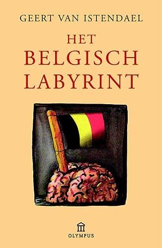 9789046704936: Het Belgisch labyrint: een wegwijzer (overschilderd natuurlijk)
