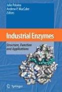 9789048110933: Industrial Enzymes