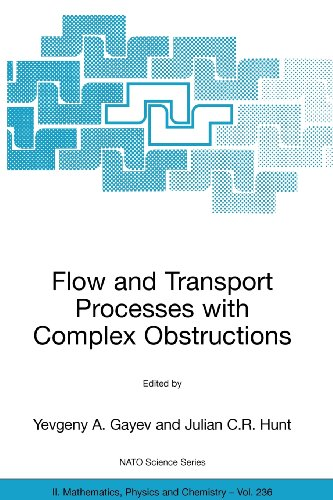 9789048110964: Flow and Transport Processes with Complex Obstructions