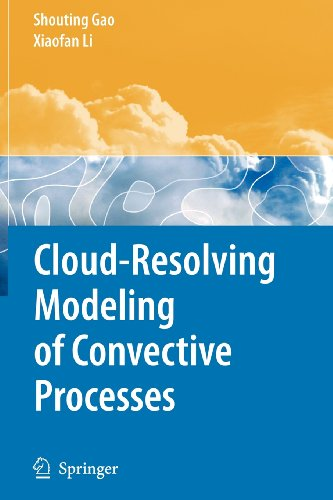 9789048117338: Cloud-Resolving Modeling of Convective Processes